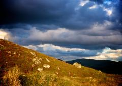 Sunlight piercing through the clouds lights up the wild moorland